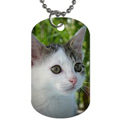 Young Cat Dog Tag (Two-sided)