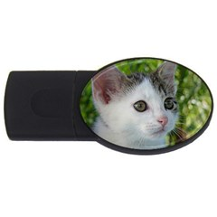 Young Cat 2GB USB Flash Drive (Oval)