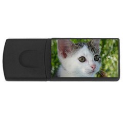 Young Cat 1GB USB Flash Drive (Rectangle)