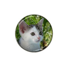 Young Cat Golf Ball Marker (for Hat Clip)