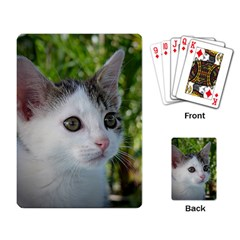 Young Cat Playing Cards Single Design