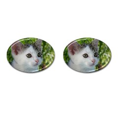 Young Cat Cufflinks (Oval)