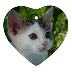 Young Cat Heart Ornament (two Sides)
