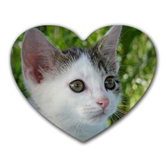 Young Cat Mouse Pad (heart)