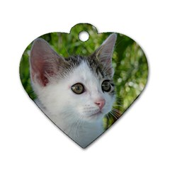 Young Cat Dog Tag Heart (One Sided)