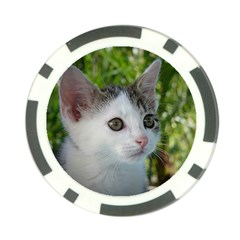 Young Cat Poker Chip