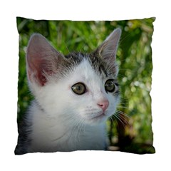 Young Cat Cushion Case (Two Sided)