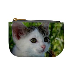 Young Cat Coin Change Purse