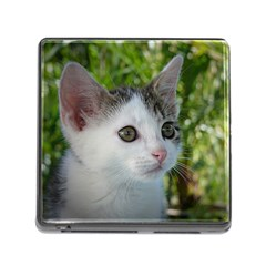 Young Cat Memory Card Reader With Storage (square)