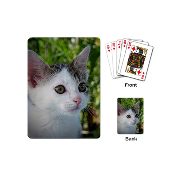 Young Cat Playing Cards (Mini)