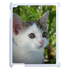 Young Cat Apple iPad 2 Case (White)