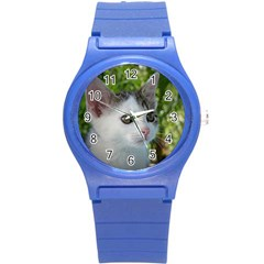 Young Cat Plastic Sport Watch (small)
