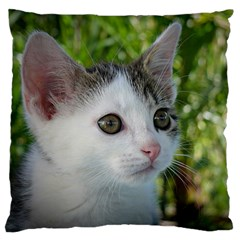 Young Cat Large Cushion Case (Two Sided)