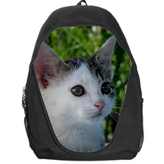 Young Cat Backpack Bag