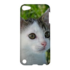 Young Cat Apple Ipod Touch 5 Hardshell Case