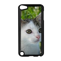 Young Cat Apple iPod Touch 5 Case (Black)