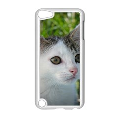 Young Cat Apple iPod Touch 5 Case (White)