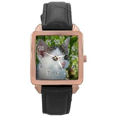 Young Cat Rose Gold Leather Watch