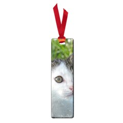 Young Cat Small Bookmark