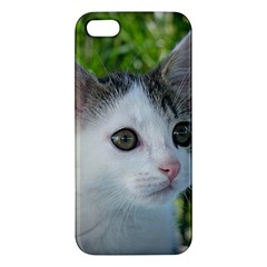 Young Cat iPhone 5 Premium Hardshell Case