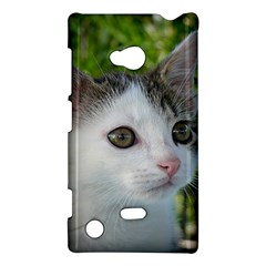 Young Cat Nokia Lumia 720 Hardshell Case