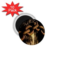 Chain 1 75  Button Magnet (10 Pack)