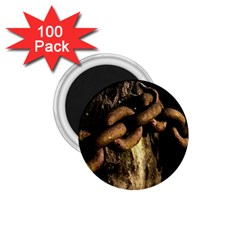 Chain 1.75  Button Magnet (100 pack)