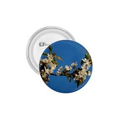 Cherry Blossom 1.75  Button