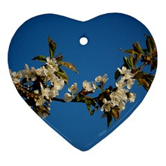 Cherry Blossom Heart Ornament