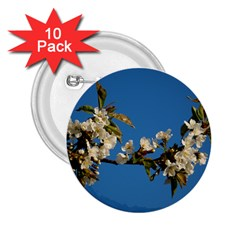 Cherry Blossom 2 25  Button (10 Pack)