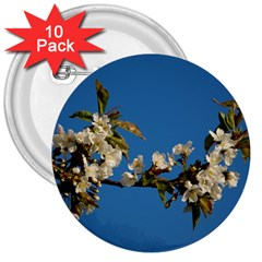 Cherry Blossom 3  Button (10 pack)