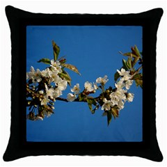 Cherry Blossom Black Throw Pillow Case