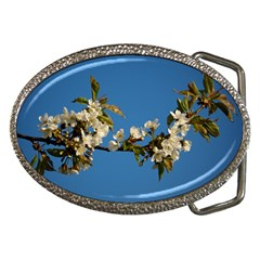 Cherry Blossom Belt Buckle (oval)