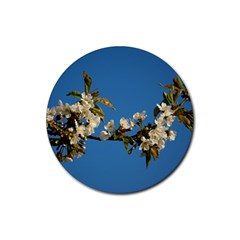 Cherry Blossom Drink Coasters 4 Pack (Round)