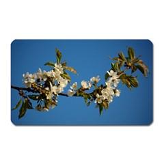 Cherry Blossom Magnet (rectangular)