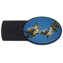 Cherry Blossom 2gb Usb Flash Drive (oval)