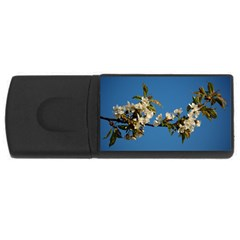 Cherry Blossom 4GB USB Flash Drive (Rectangle)
