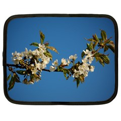 Cherry Blossom Netbook Case (xxl)