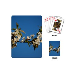 Cherry Blossom Playing Cards (mini)