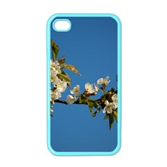 Cherry Blossom Apple iPhone 4 Case (Color)