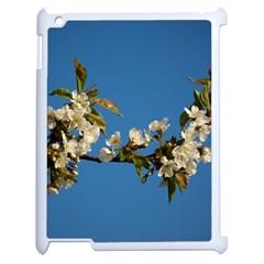 Cherry Blossom Apple iPad 2 Case (White)