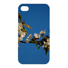Cherry Blossom Apple iPhone 4/4S Premium Hardshell Case