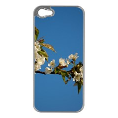 Cherry Blossom Apple iPhone 5 Case (Silver)