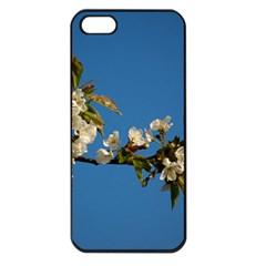 Cherry Blossom Apple iPhone 5 Seamless Case (Black)