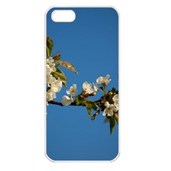 Cherry Blossom Apple Iphone 5 Seamless Case (white)