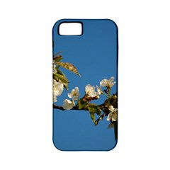 Cherry Blossom Apple Iphone 5 Classic Hardshell Case (pc+silicone)