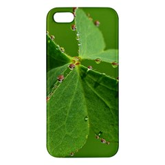 Drops iPhone 5 Premium Hardshell Case