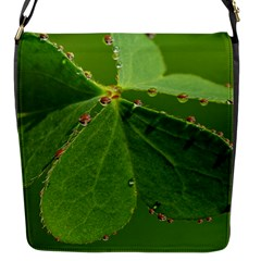 Drops Flap closure messenger bag (Small)