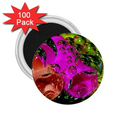 Tubules 2.25  Button Magnet (100 pack)