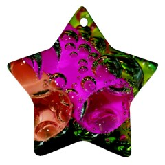 Tubules Star Ornament (two Sides)